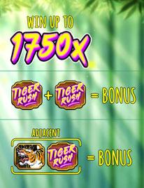Tiger Rush Screenshot 1