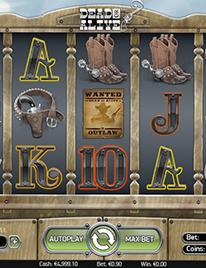 Dead or Alive Slot Screenshot 3