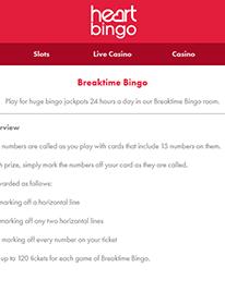 Breaktime Bingo Screenshot 3