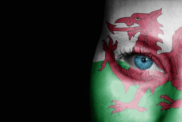 Welsh Premier League 2021
