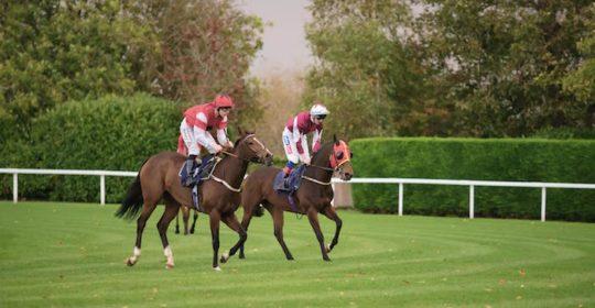 Windsor Racecourse