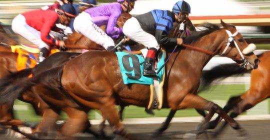 Kentucky Downs Racecourse