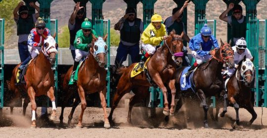 Arizona Downs Racecourse