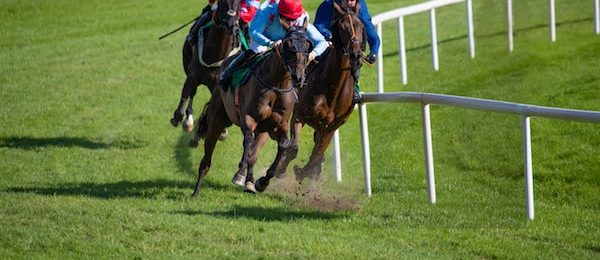 Houghton Mare's Chase 2020