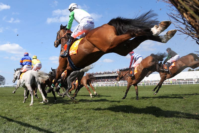 Champion hurdle 2021 betting lines cryptocurrency pictures of birds