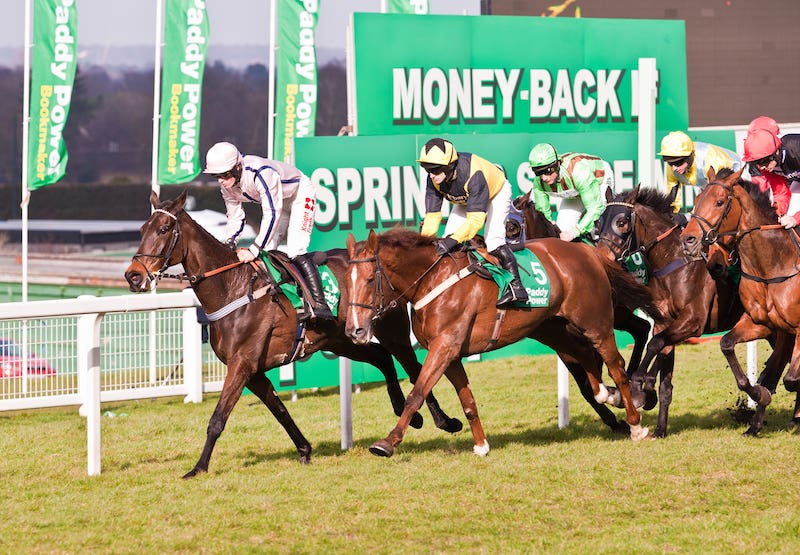 Henry VIII Novices' Chase at Sandown 2020