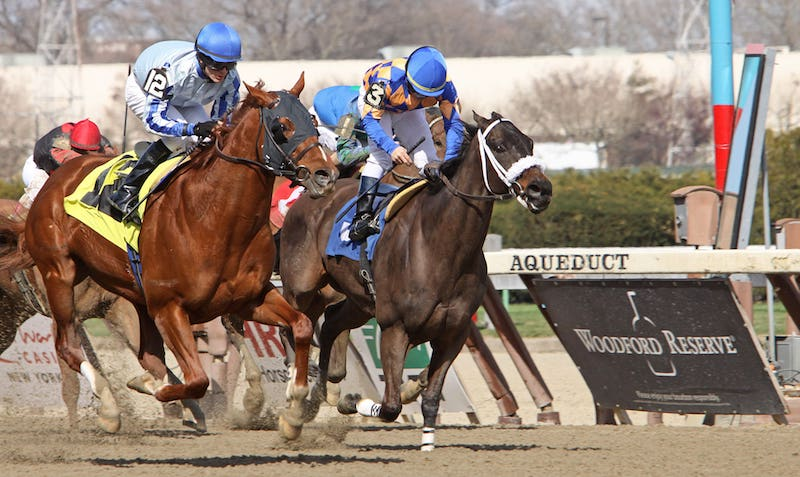 Demoiselle Stakes at Aqueduct 2021