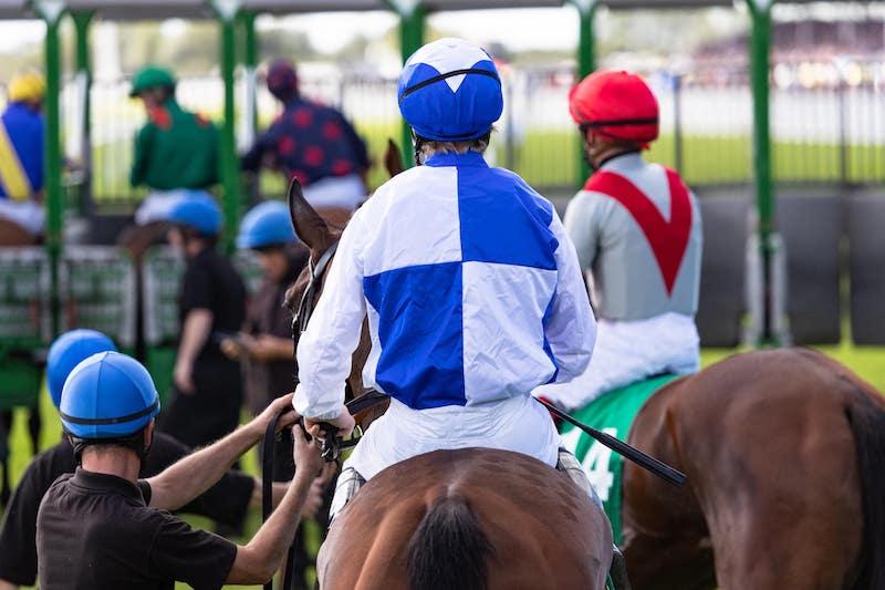 Picnic Raceday at Ffos Racecourse 2021
