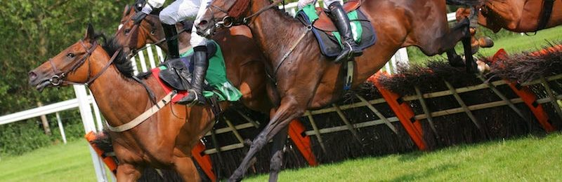 Summer Cup at Uttoxeter 2021