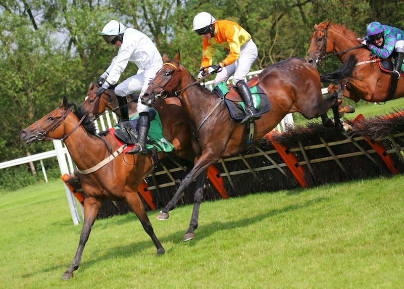 the races uttoxeter betting