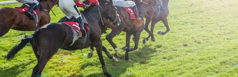 Sussex Stakes at Goodwood 2021
