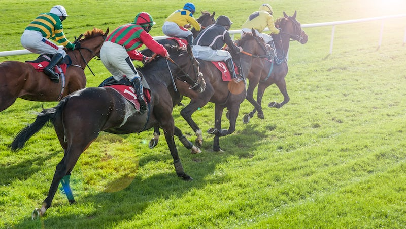 Sussex stakes 2021 betting odds csgo poor betting sites