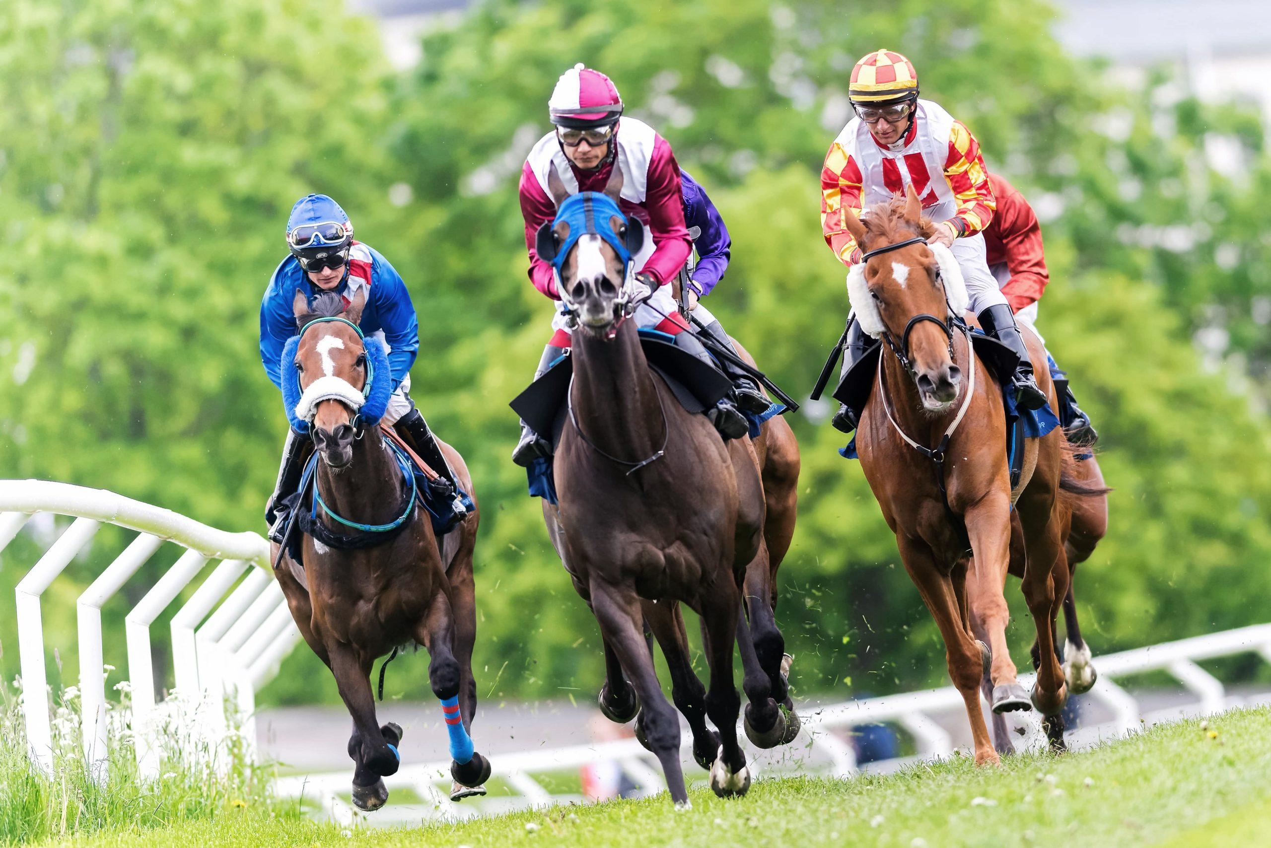 Cincinnatian Stakes | Belterra Park | July 2021