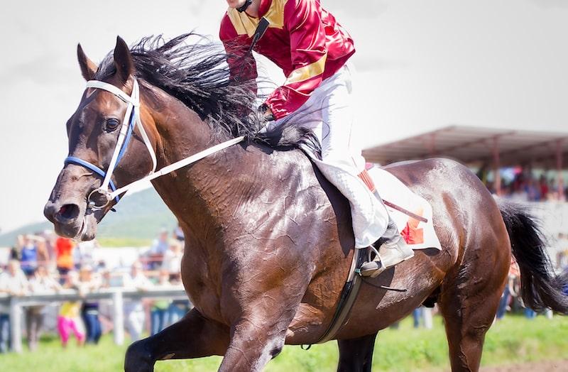 Tah Dah Stakes | Belterra Park | August 2021