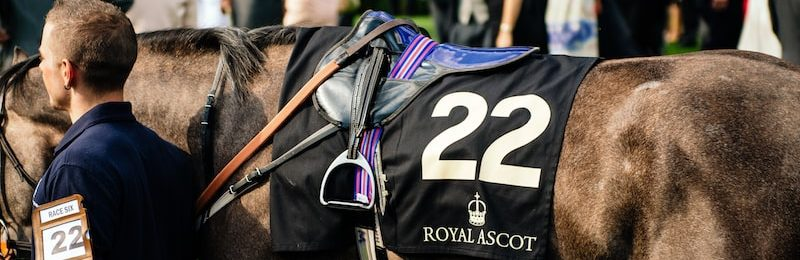 Champion Stakes Ascot 2021