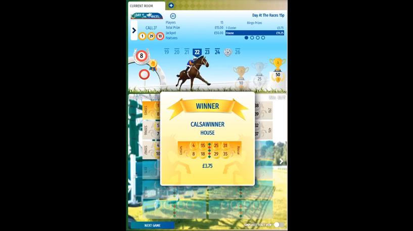 Day at the Races Bingo Screenshot 3