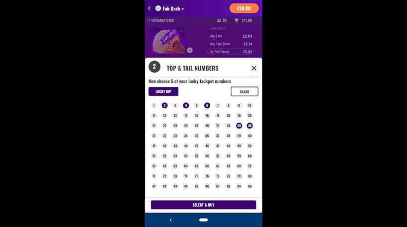 Fab Grab Bingo Screenshot 1