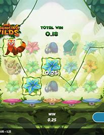Jin's Bouncing Wilds Slot Screenshot 1