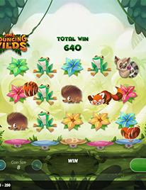 Jin's Bouncing Wilds Slot Screenshot 3