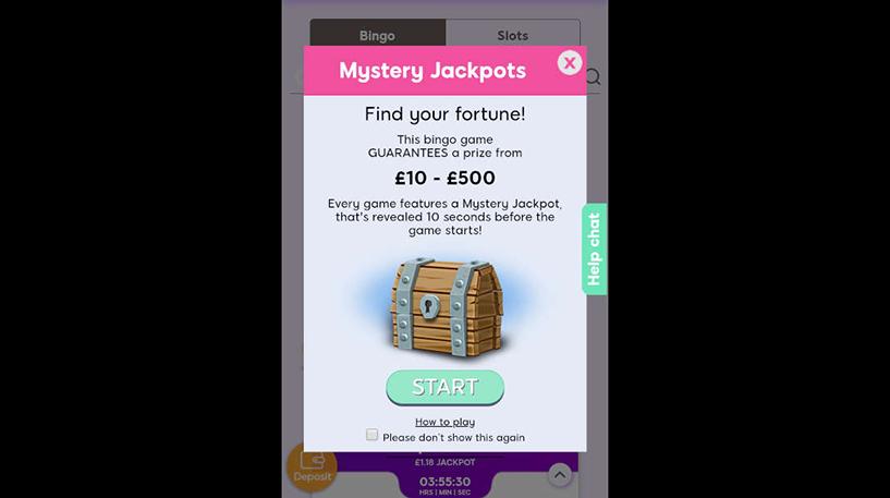 Mystery Jackpot Bingo Screenshot 2